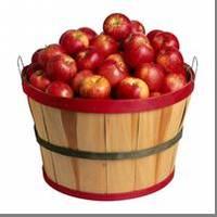 hranenie_apple