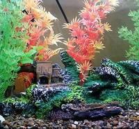Оформление аквариумов искусственными растениями