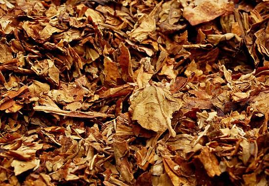 tabak (3)